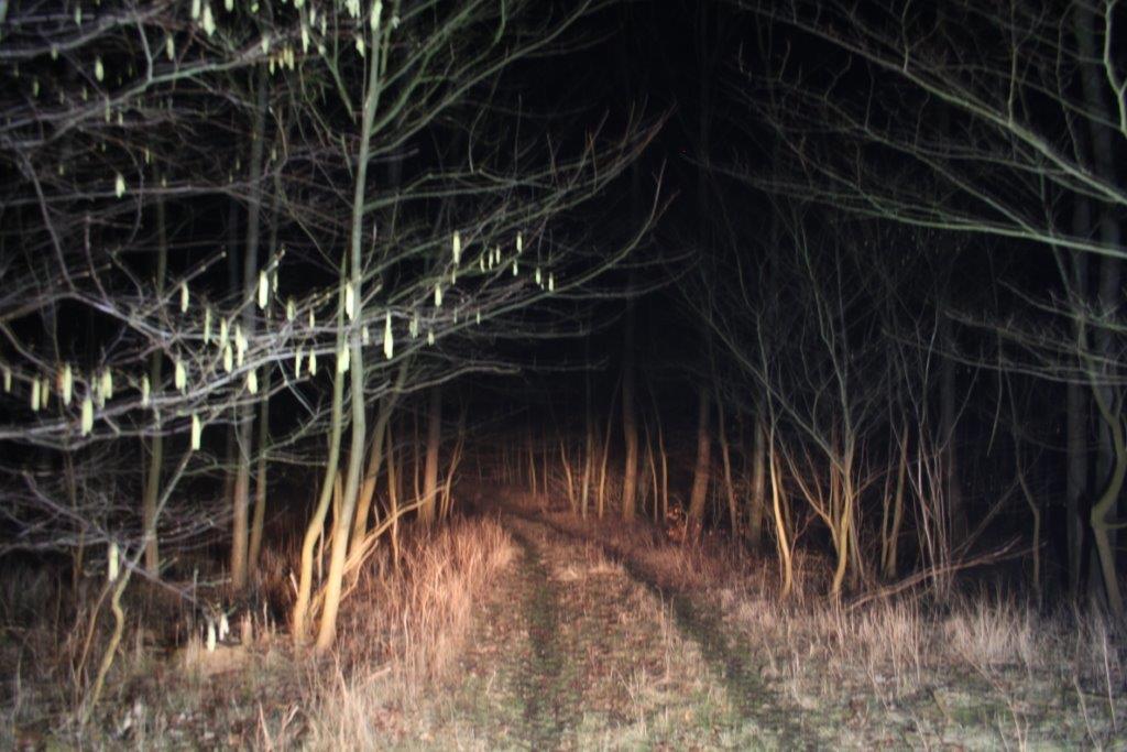 LED og langt lys